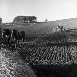Sowing and Harrowing